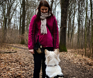 DSC_0283-1 %Hundeblog