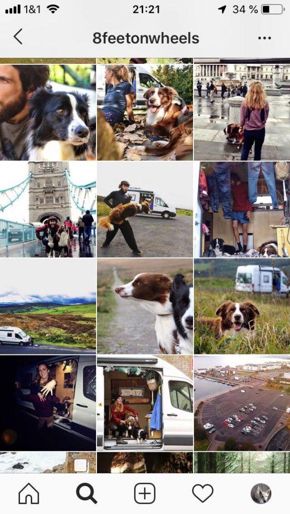8feetonwheels-577x1024 %Hundeblog