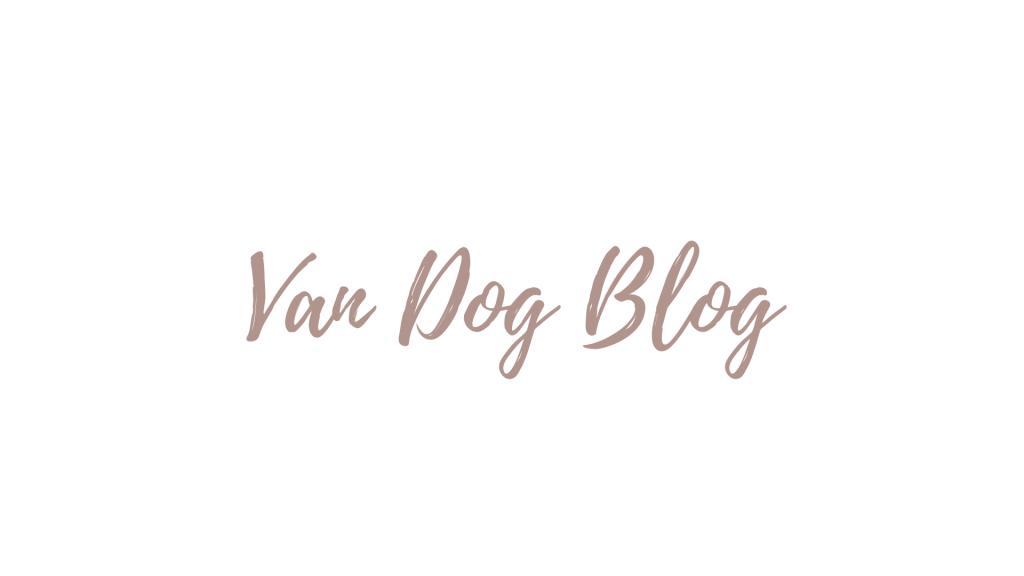 Die-tut-nichts-8-1024x576 %Hundeblog