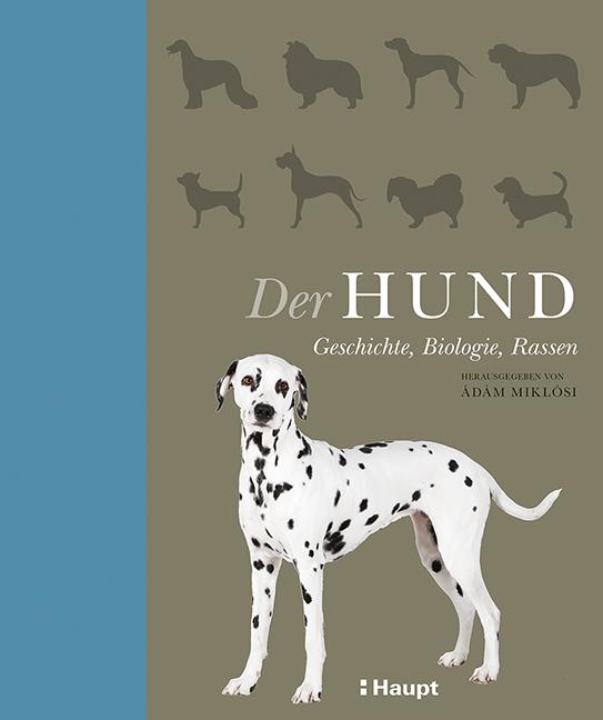 DerHund %Hundeblog