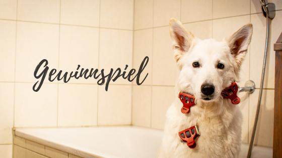 Waschen_-2 %Hundeblog