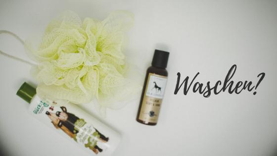 Waschen_ %Hundeblog