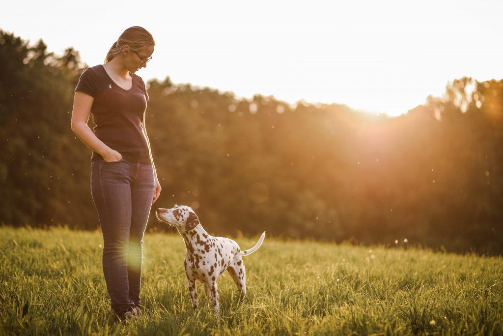 SarahundAlma-1024x683 %Hundeblog