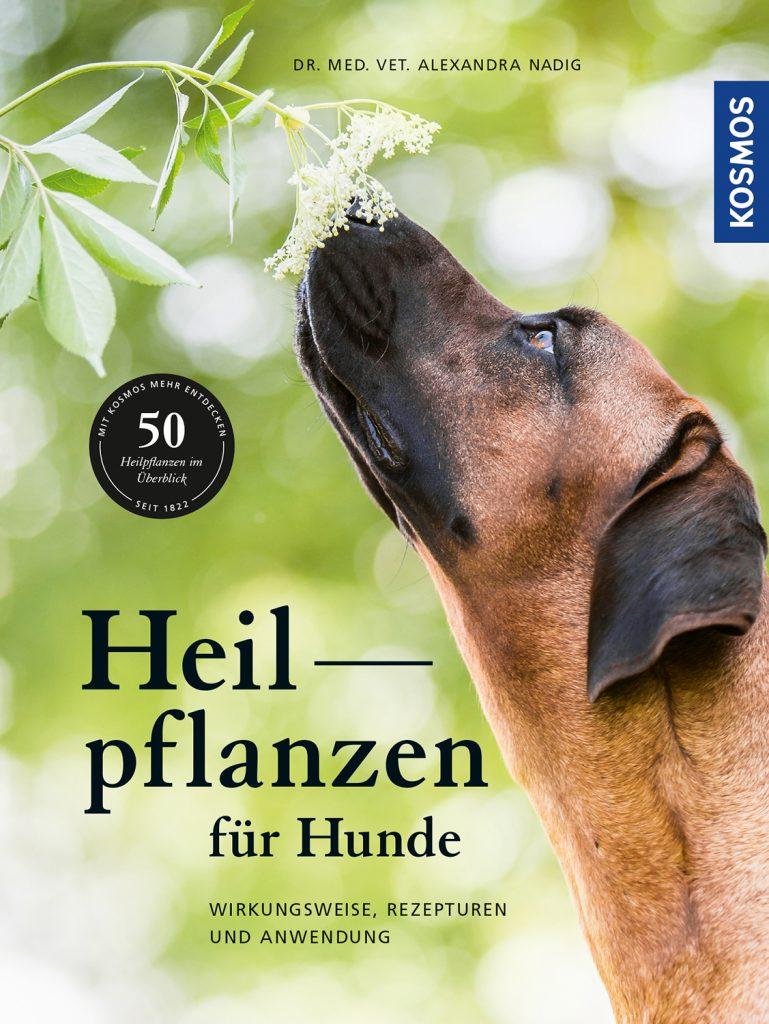HeilpflanzenfürHunde-769x1024 %Hundeblog