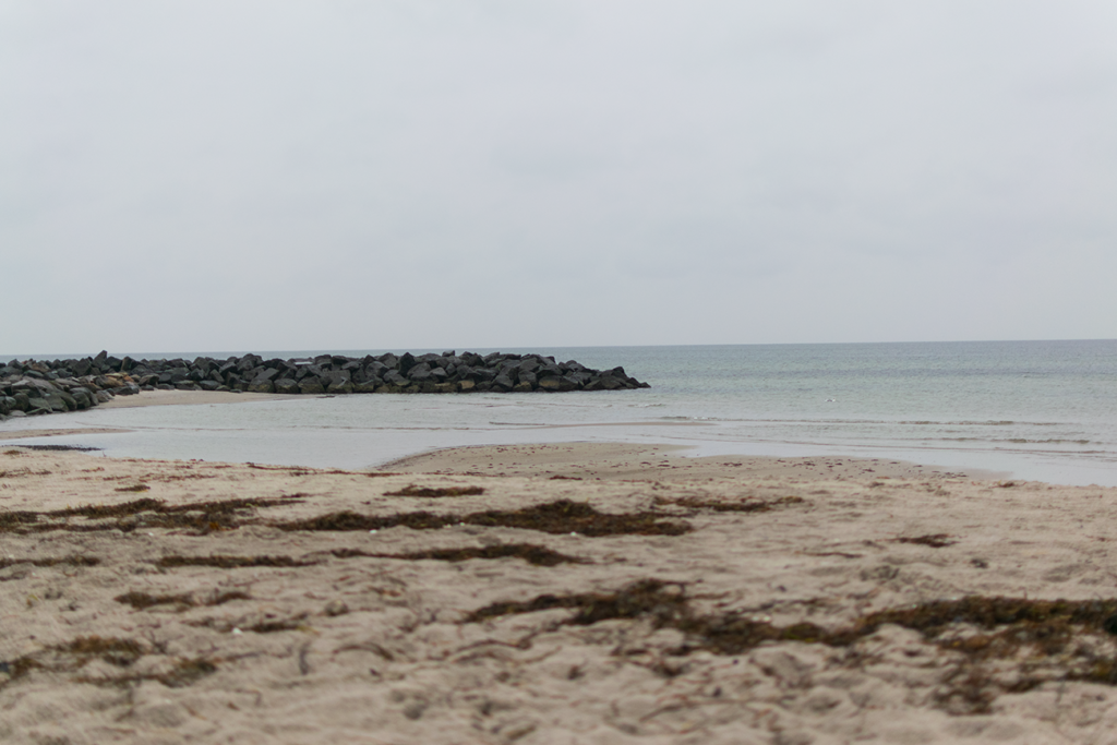 Brasilien-Strand-1024x683 %Hundeblog