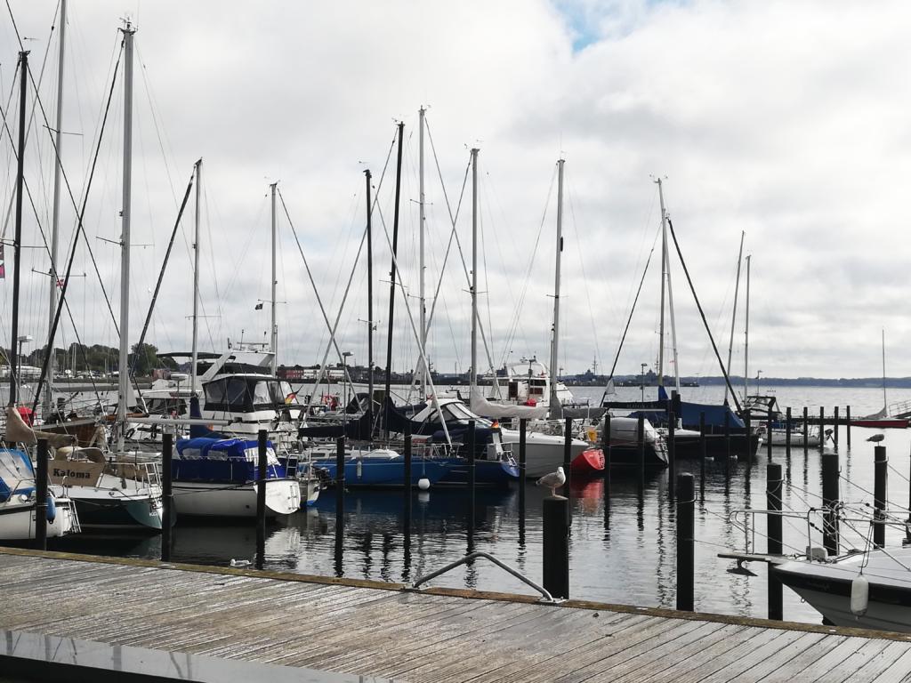 Eckernfoerde-Hafen-1024x768 %Hundeblog