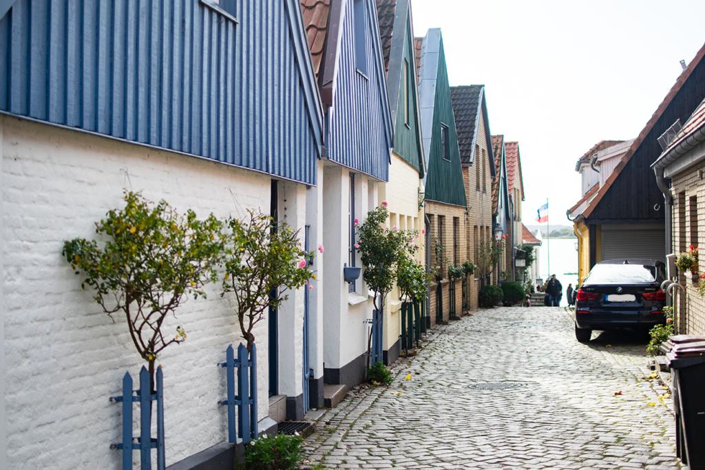Schleswig-Holm-1024x683 %Hundeblog