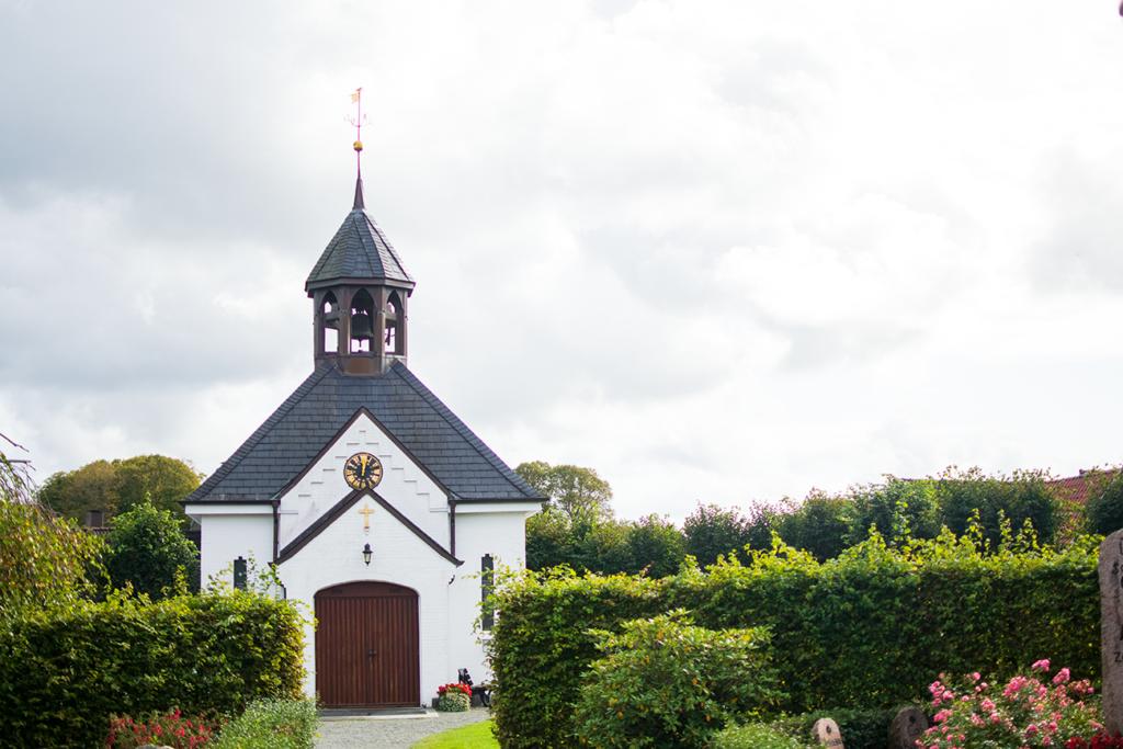 Schleswig-Holm-Friedhof-1024x683 %Hundeblog
