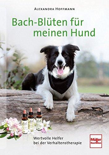 Bachblueten-fuer-meinen-Hund %Hundeblog